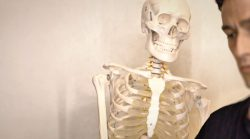 Advanced training with the skeleton dummy
