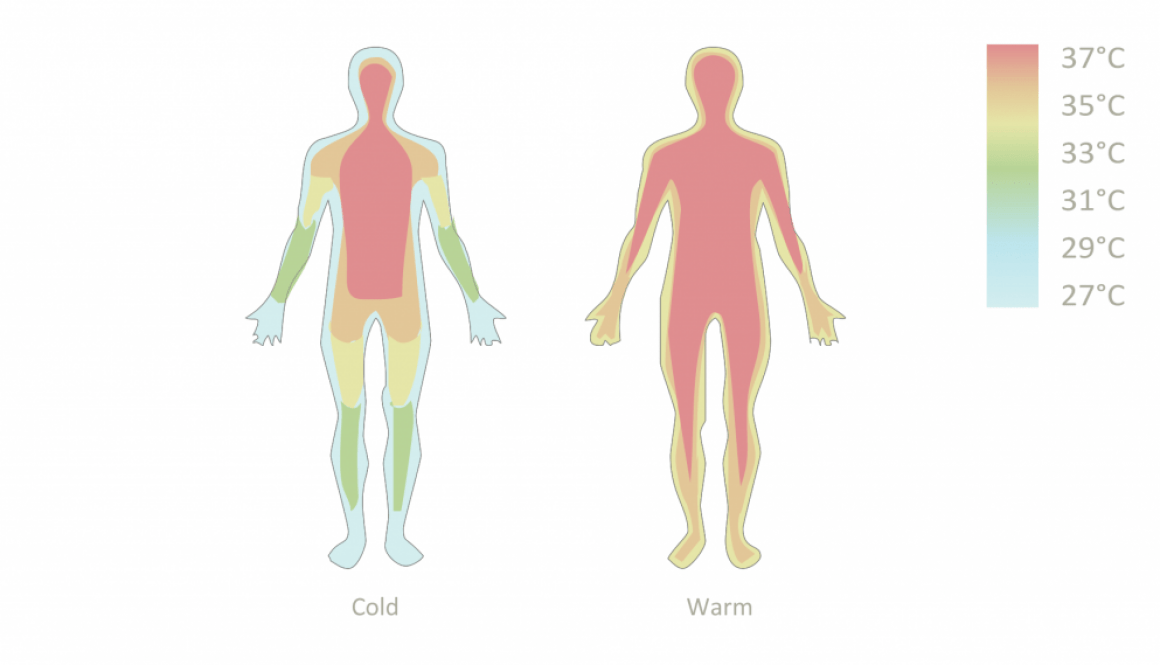 how_to_control_the_perception_of_cold
