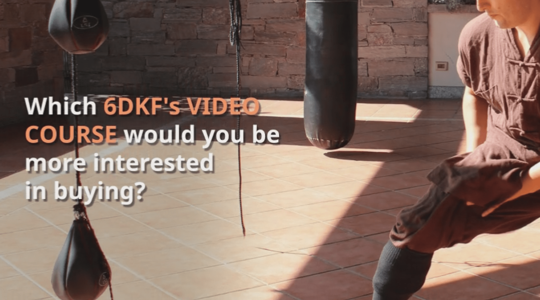 6 Dragons Kung fu video courses: the poll