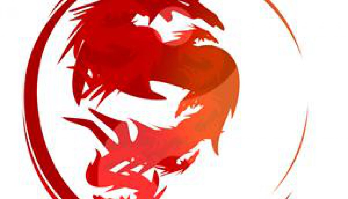 The_6_Dragons_Kung_Fu_s_way_m22_t13348