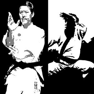 The signals that identify an attacker who practice martial arts