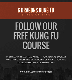 Our Free Online Kung Fu Course