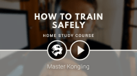 Learn Kung Fu online: free introductory video course
