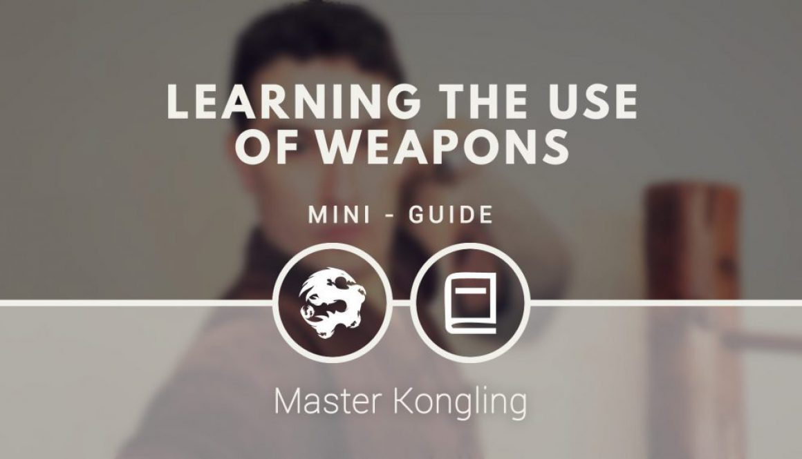 learning_the_use_weapons