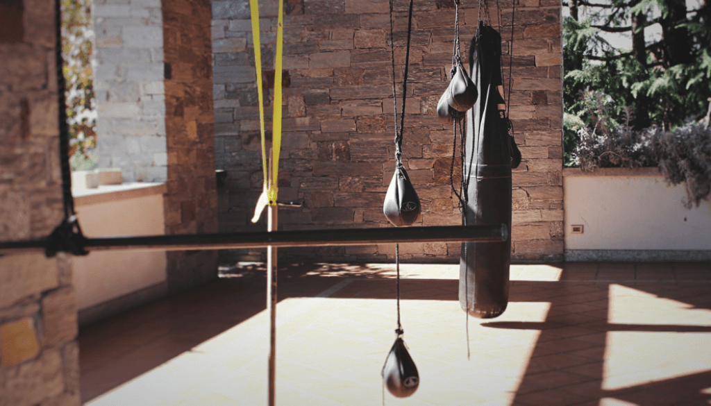 how_to_train_professionally_in_martial_arts