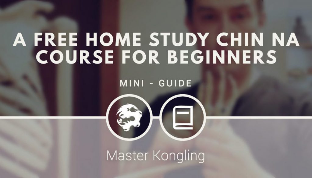 a_free_home_study_chin_na_course_for_beginners