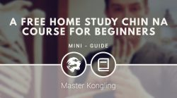 A FREE Home Study CHIN NA COURSE for BEGINNERS