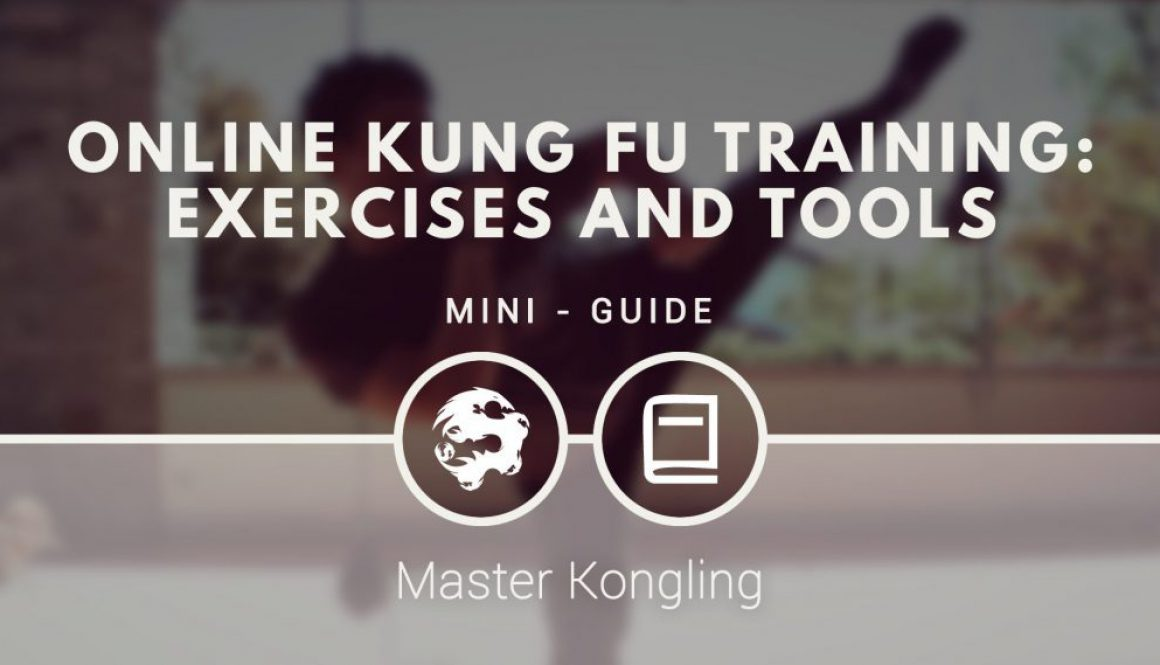 online_kung_fu_training_exercises_and_tools