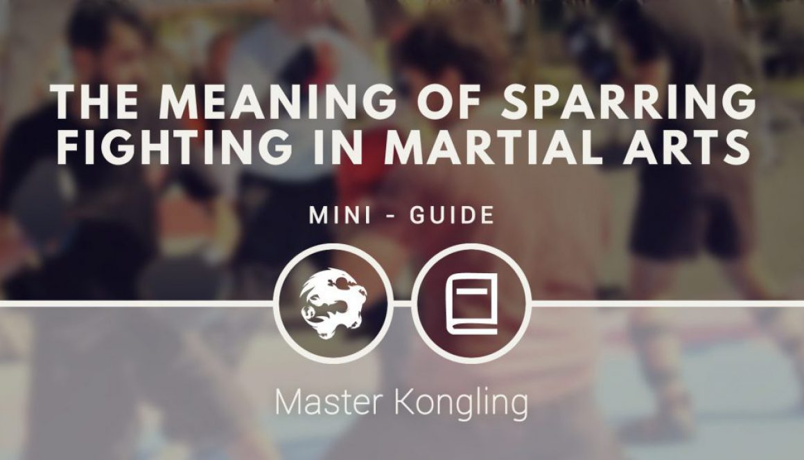 the_meaning_of_sparring_fighting_in_martial_arts