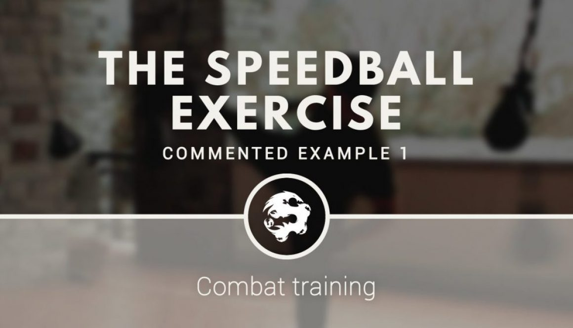 combat_training_the_speedball_exercise