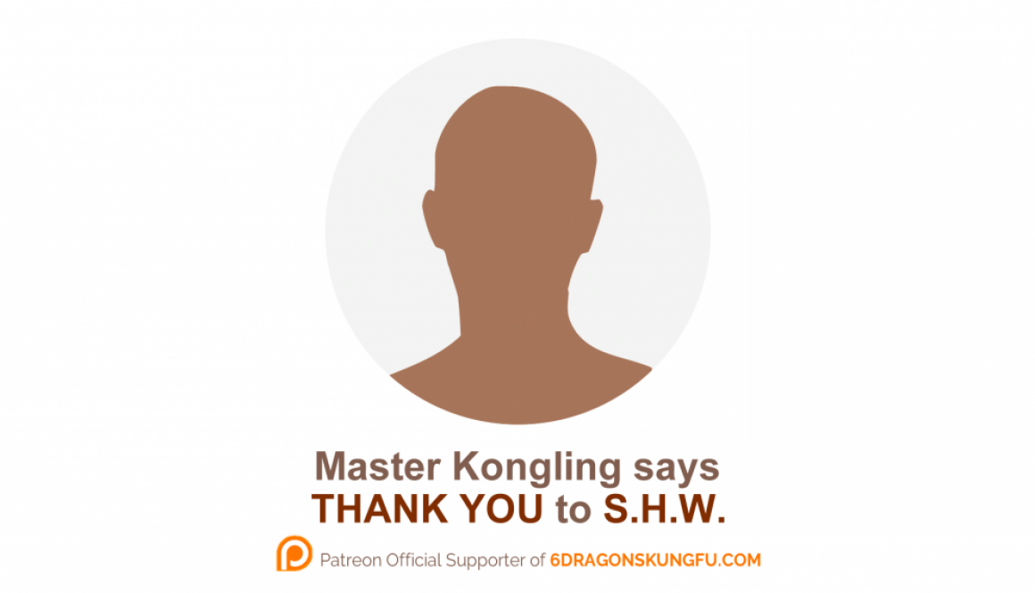 new_6_dragons_kung_fu_s_donor_thank_you_s_h_w