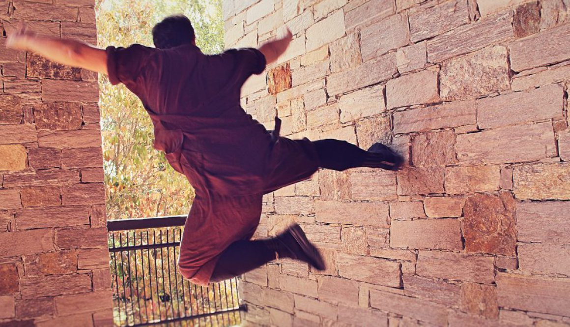 my_first_step_in_the_6_dragons_kung_fu_core_course