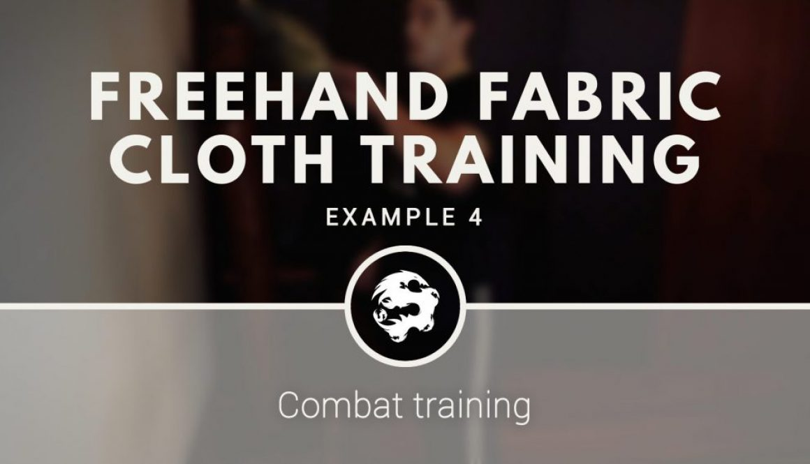 6_dragons_kung_fu_s_fabric_cloth_training_demo