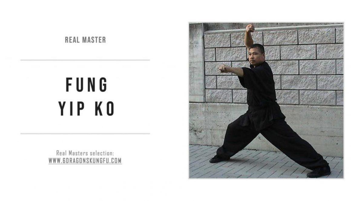 fung_yip_ko_real_master