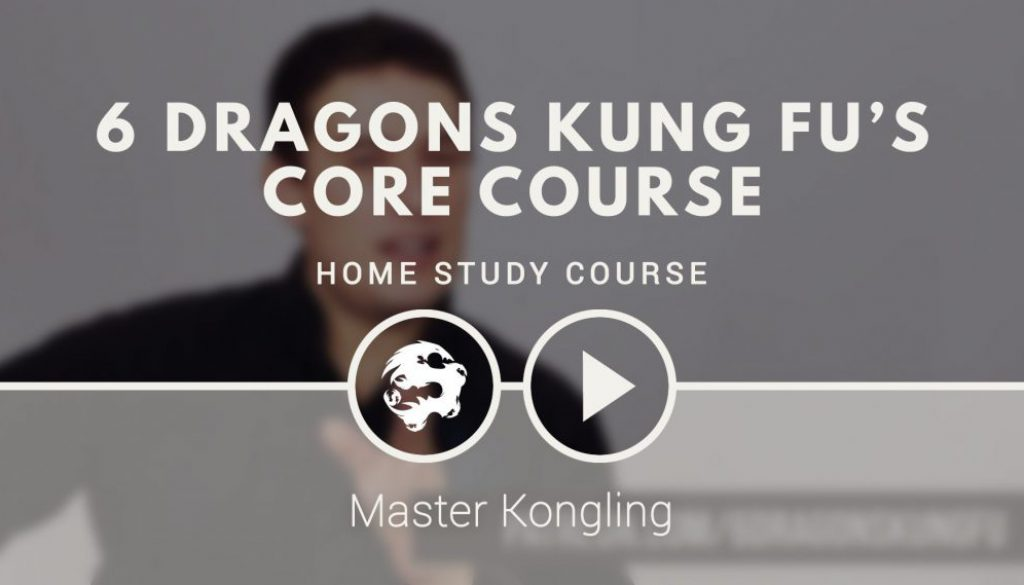 learn_kung_fu_online_on_patreon
