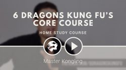 Learn Kung Fu online on Patreon