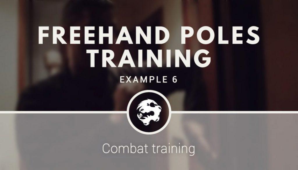 6_dragons_kung_fus_poles_training_demo