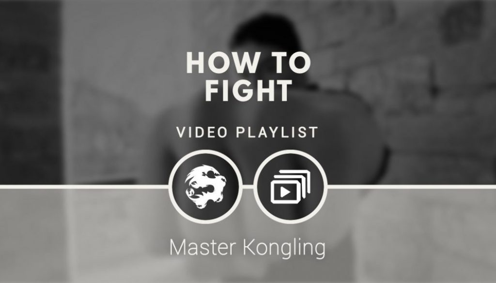 how_to_fight_video_playlist