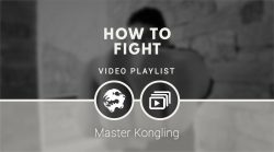 How to fight (video playlist)