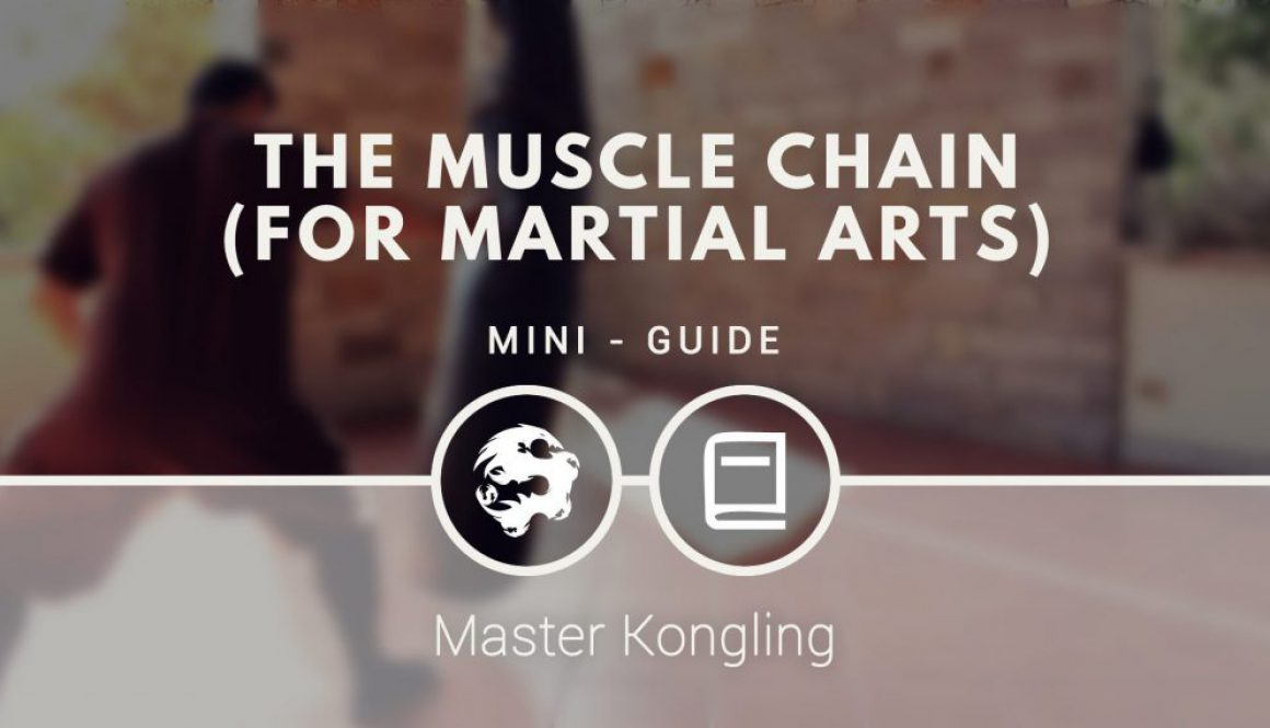 the_muscle_chain_for_martial_arts_mini_guide