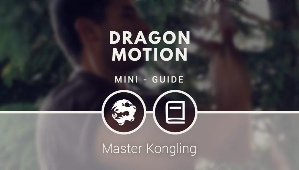 dragon_motion_mini_guide