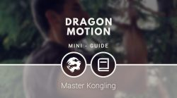 Dragon Motion [MINI-GUIDE]