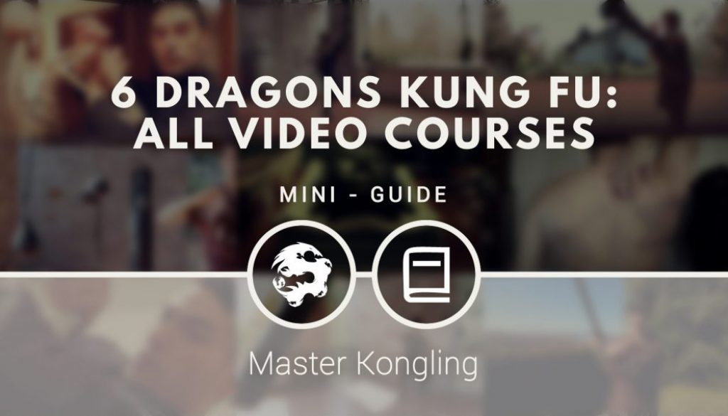 6_dragons_kung_fu_all_video_courses