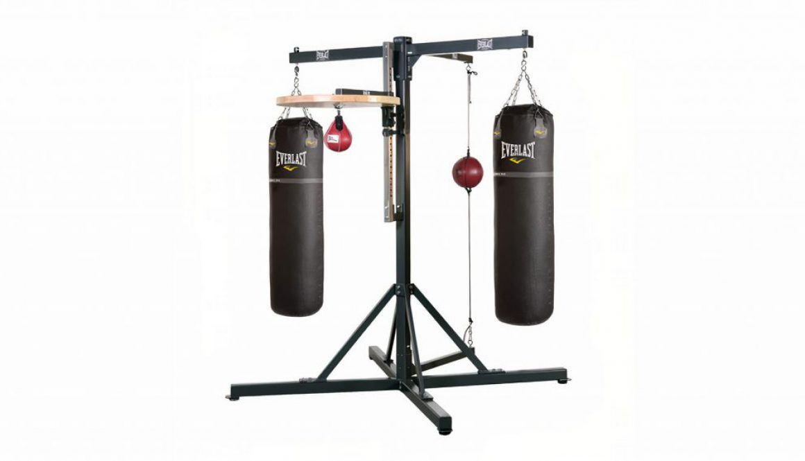 pro_4_station_boxing_gym