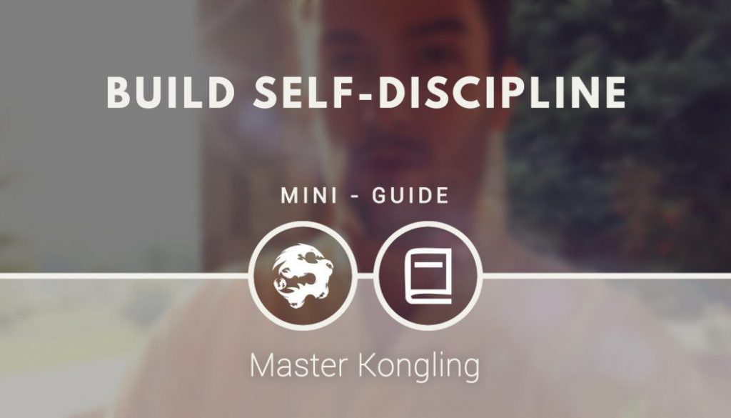 build_self_discipline_mini_guide