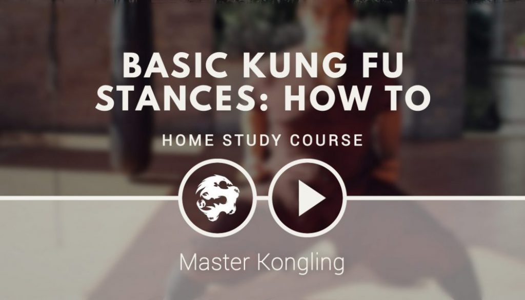 basic_kung_fu_stances_how_to