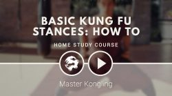 Introduction – Basic Kung Fu stances: how to